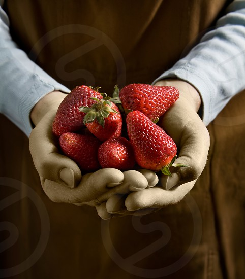 person holding red strawberries photo