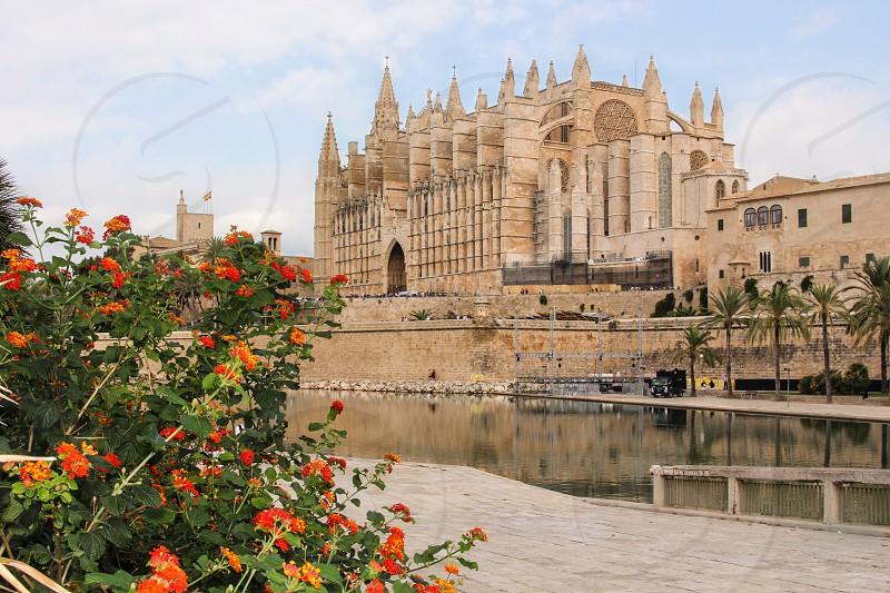 Palma Mallorca Cathedral church Spain mediterranean photo