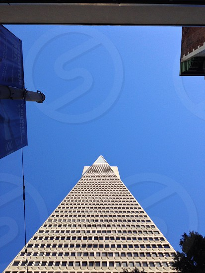 white tall building photo