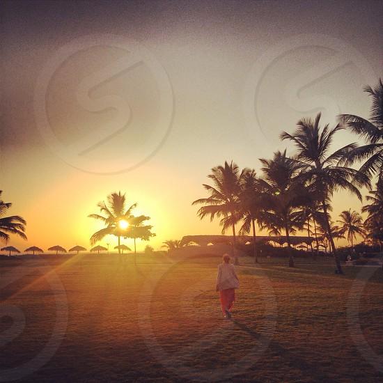 Goa India photo