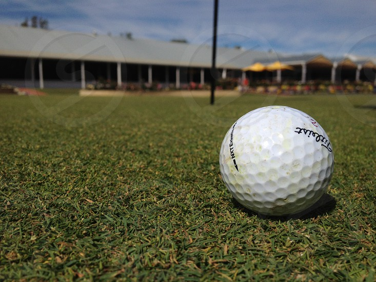 shallow focus photography of white Titlesit golf ball on green grass photo