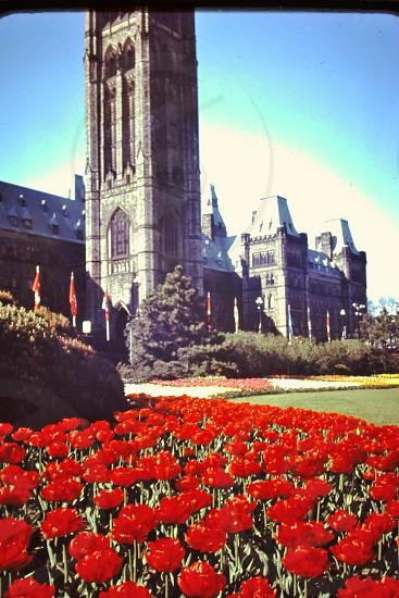 Ottawa Parliament 1964. photo