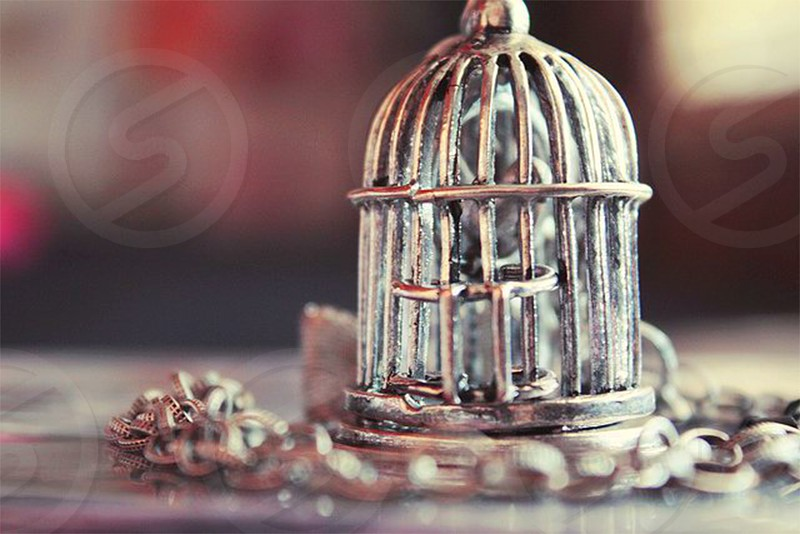 gray metal bird cage pendant necklace photo