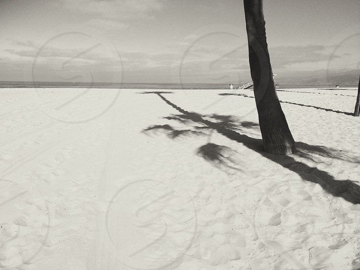 grey sand photo