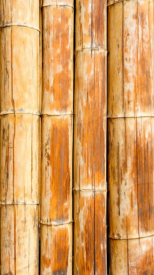 Bamboo cane pattern texture background in brown color photo