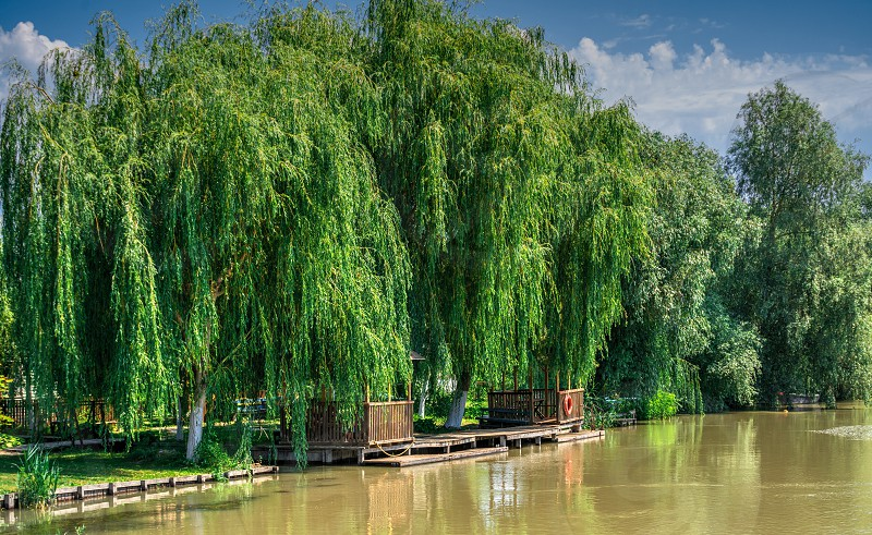 Danube River near the village of Vilkovo Ukraine on a sunny summer day photo