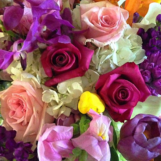 Flowers to brighten your day.  Flowers color colorful vibrant roses pink purple white pretty fragrant  photo