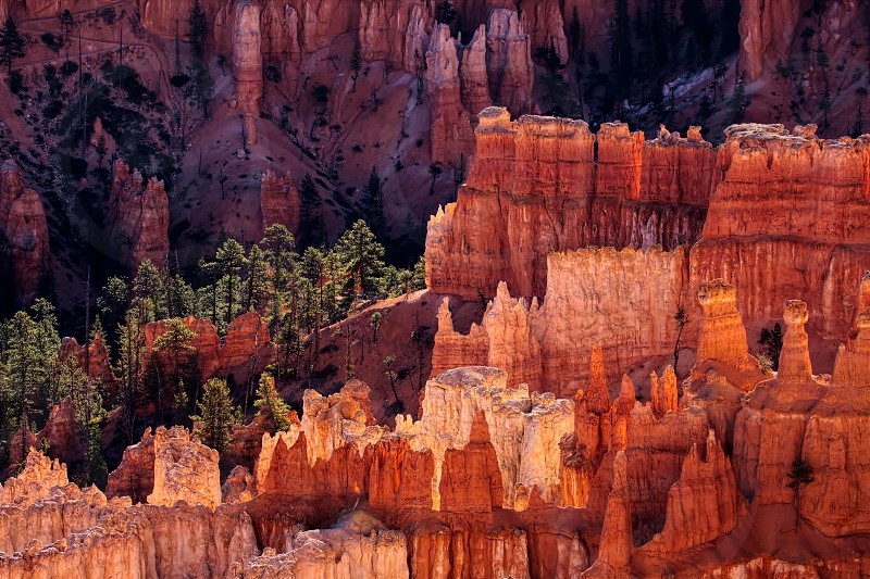 Bryce Canyon Glowing in the Early Morning Sunshine photo