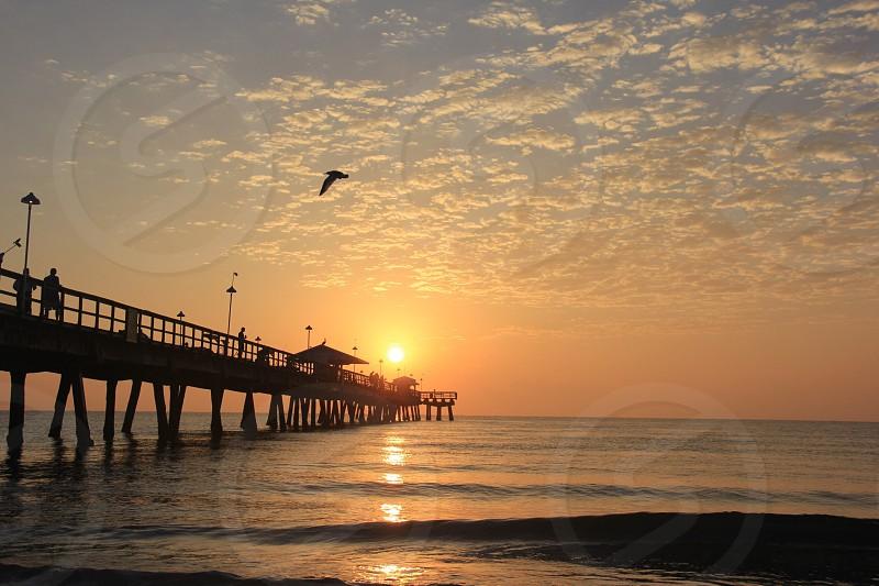 Sunrise at the pier  photo