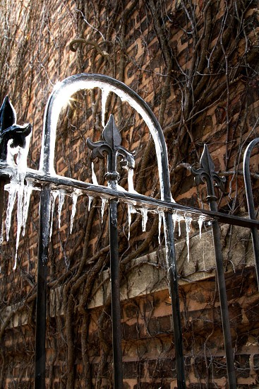 Cold icy gate photo