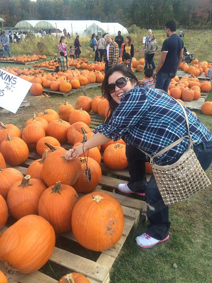 Pumpkin patch ..  photo