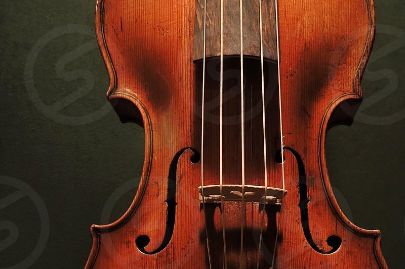 brown wooden cello photo