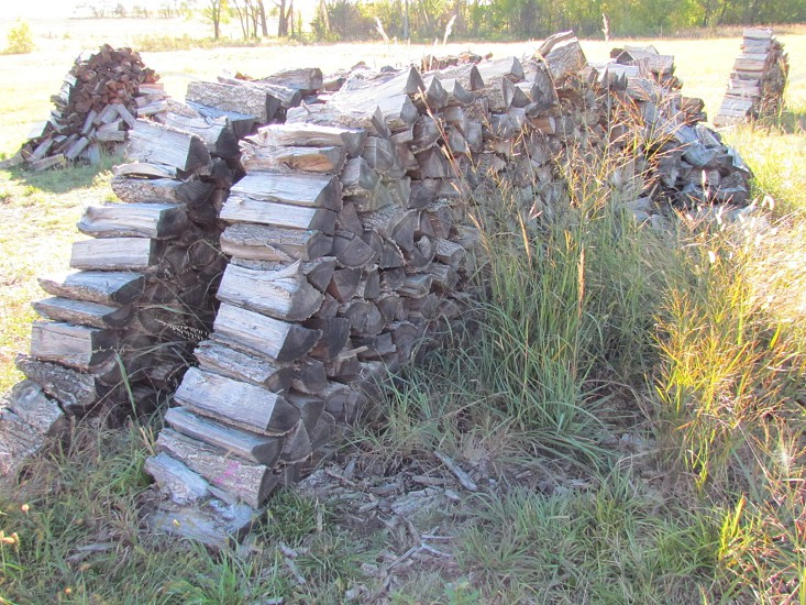 Wood piles pile firewood fuel stack  photo