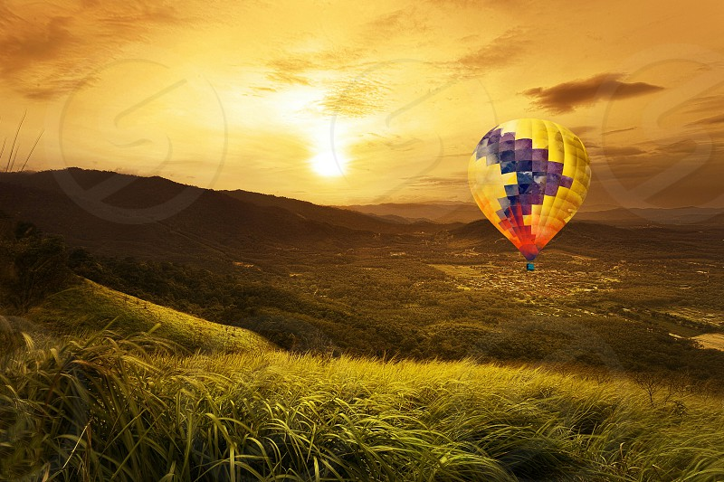 beige purple hot air balloon flying over green grass field during daytime photo