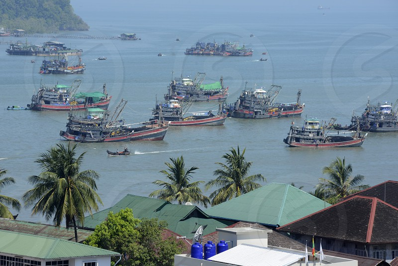 the harbour at the city of Myeik in the south in Myanmar in Southeastasia. photo