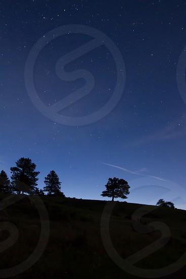 The night sky photo