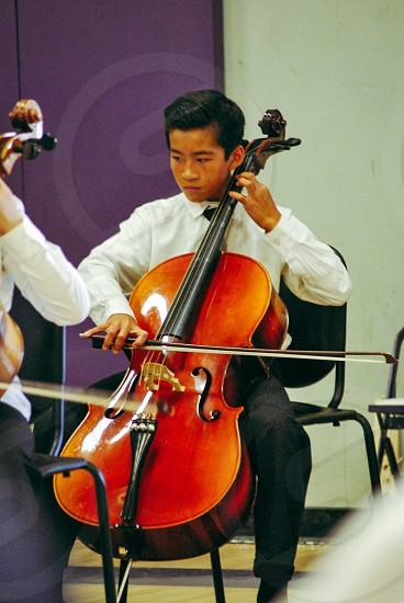 The Cellist photo