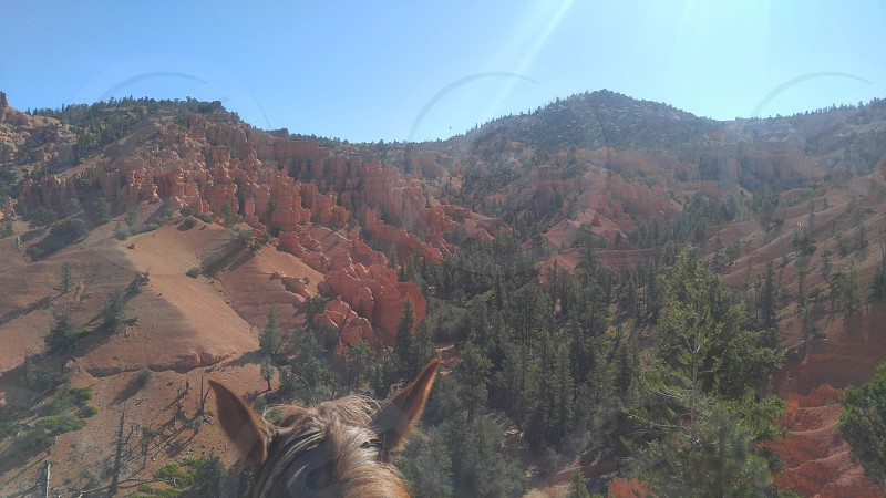 Horsback Riding - Bryce Canyon Utah photo
