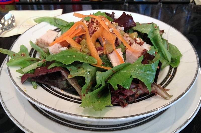 Grilled chicken salad with salad greens carrot and pecans photo
