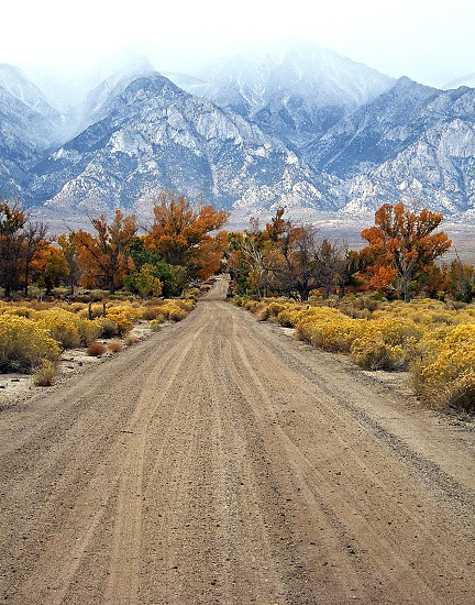 Dirt road in Lone Pine California goes straight through Fall foliage toward misty mountains of the Eastern Sierras. photo