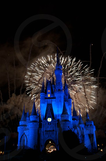 Castle and fireworks at the Walt Disney World Resort photo