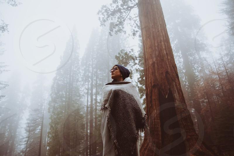 sequiona mist storm rain cold girl outdoor adventure tree giant tree glasses scarf usa roadtrip authentic photo