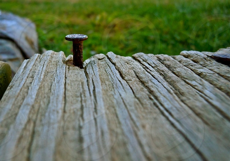 nail wood grass macro photo