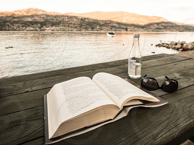 Summertime reading by the lake photo
