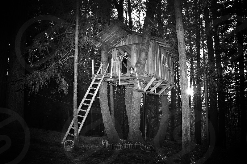 grey wooden tree house photo