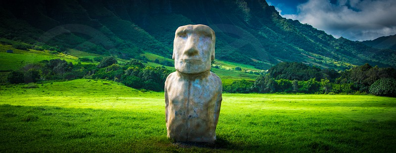 Hawaii Oahu Statue in field photo