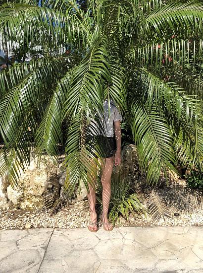 tropical plants hidden girl  photo