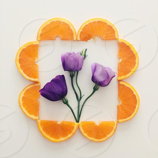 purple flower plants and sliced orange tangerine photo photo