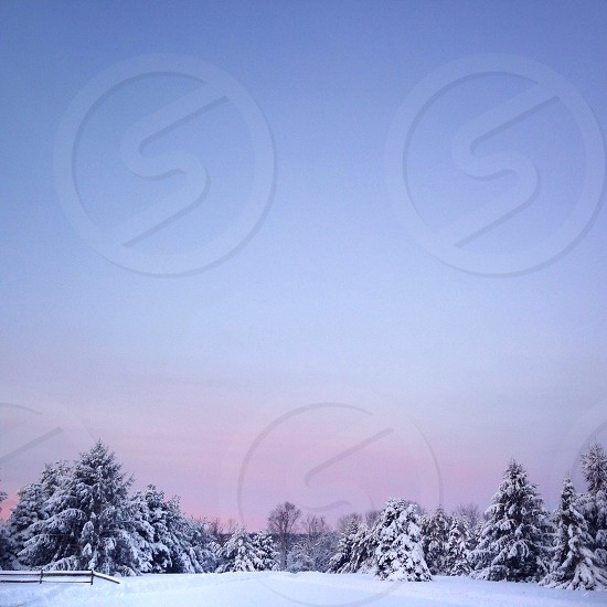 Winter In The Country photo