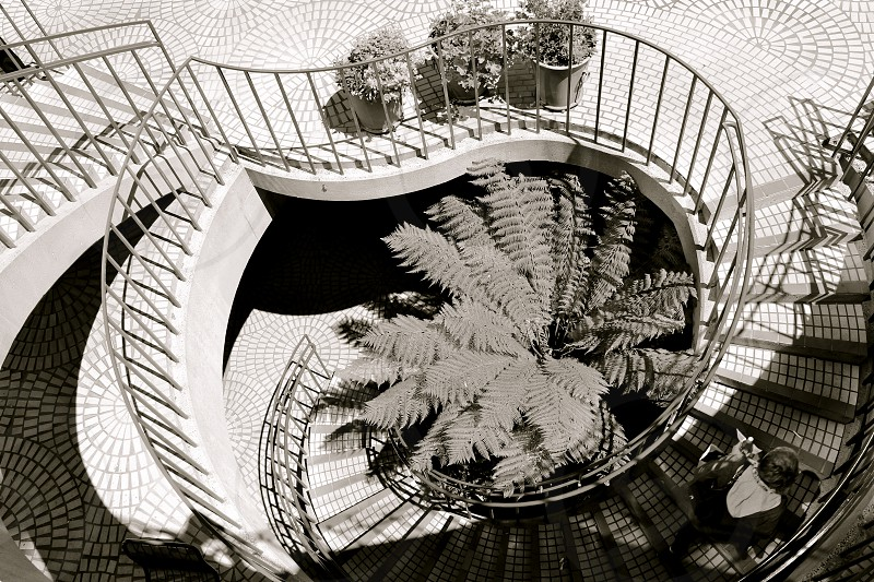 Stairs Spiral photo