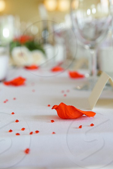 orange pedal on white table cloth near white card in front of wineglass photo