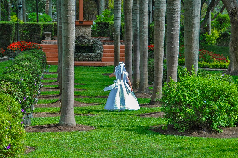 woman wearing white dress walking on grass below trees during daytime photo