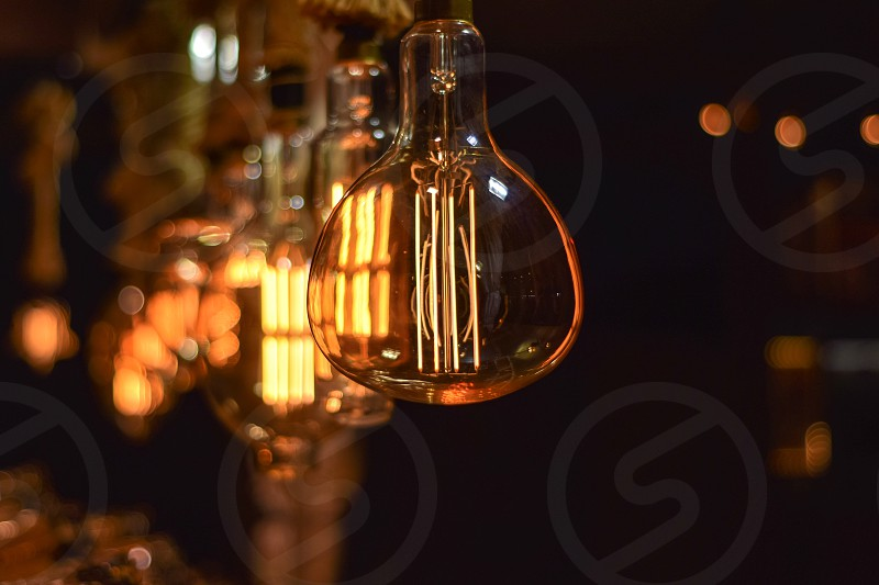 Bulbs photo