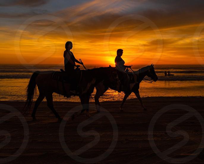 Sunset beach silhouette horseback riding photo