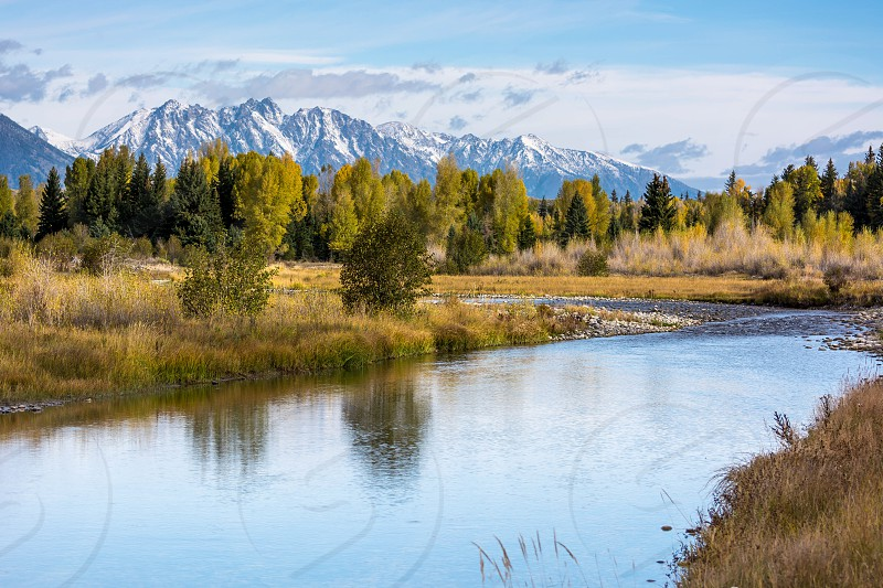 Autumnal Colours in the Grand Teton National Park photo