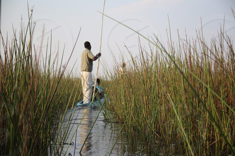 Canoe ride through the Okavango Delta Botswana photo