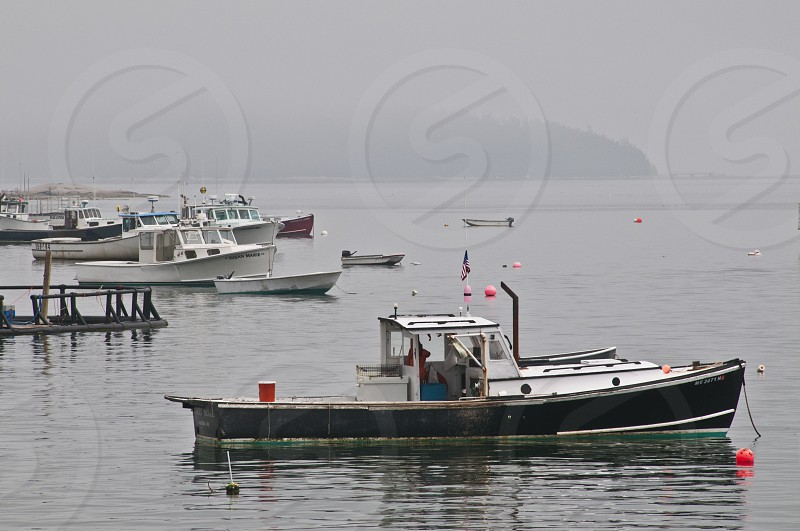 white and black boat on body of water photo