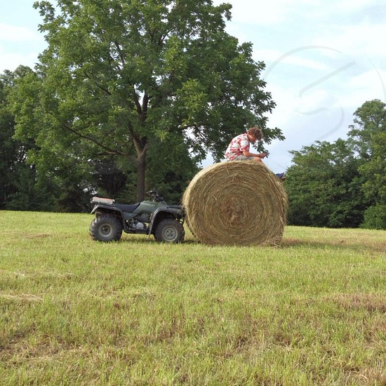 roll of hay photo