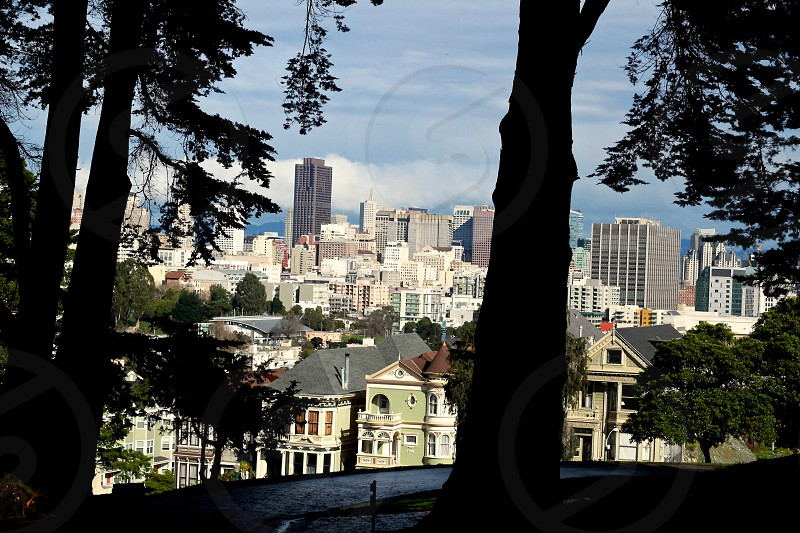 Alamo Square San Francisco photo