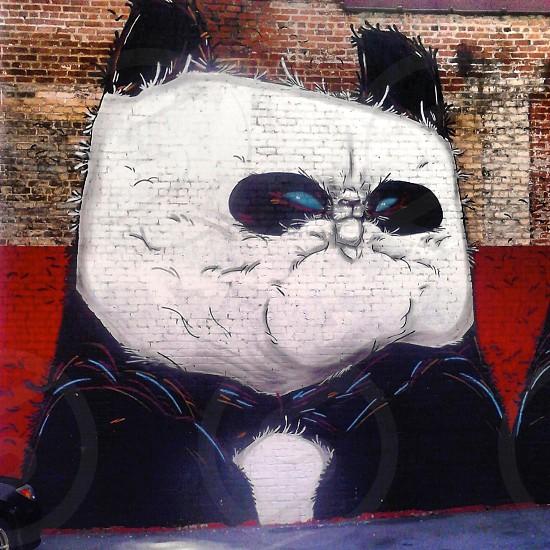 Panda street art in Richmond VA 2013  photo