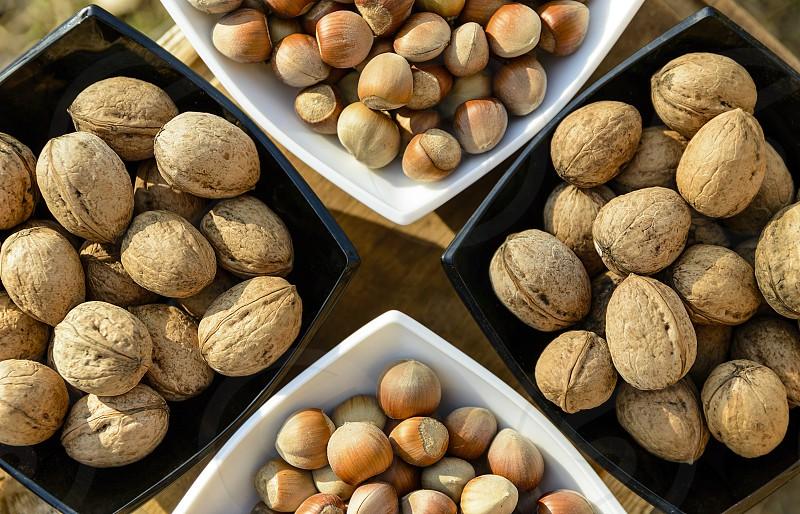 Healthy mix hazelnts and walnuts photo