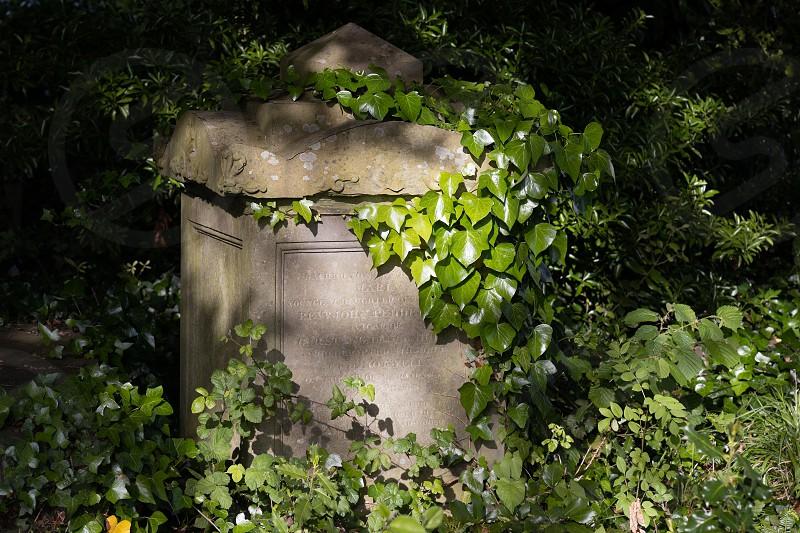 BRISTOL UK - MAY 13 : Sunlit tomb along Birdcage Walk in Bristol on May 13 2019 photo