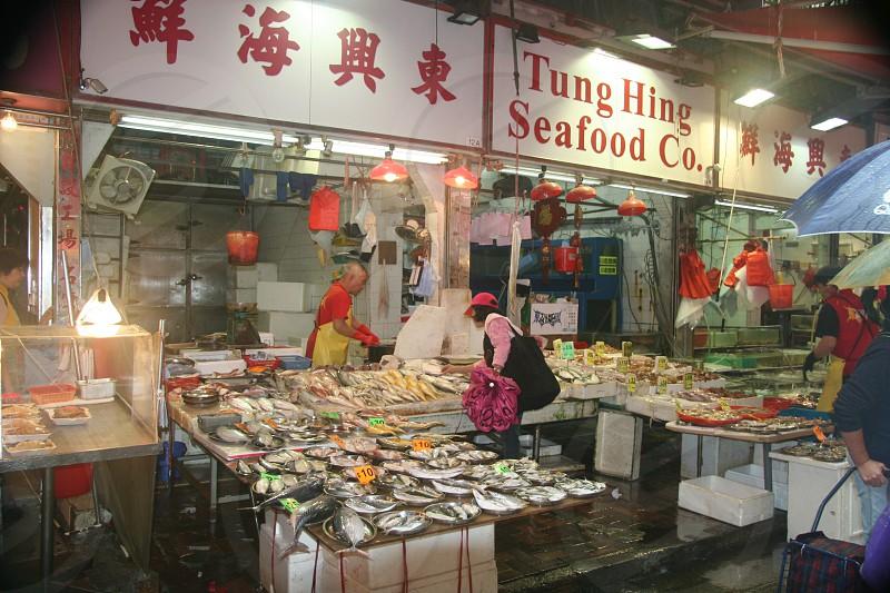 Hong Kong Fish market photo