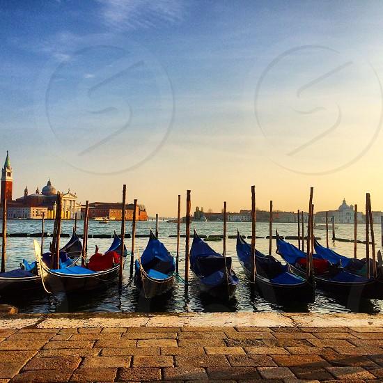 Venice gondolas Venice November 2014 photo
