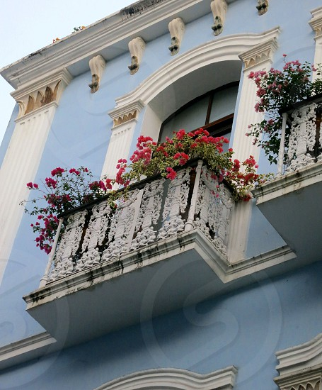 Blue and white house with balconies and red flowers Old San Juan Puerto Rico photo