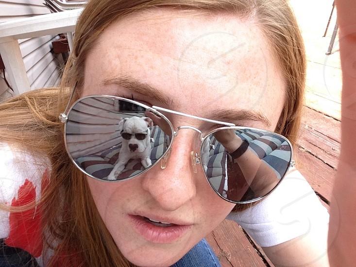 Sunglasses dog sun sunny face portrait hot cool chill photo